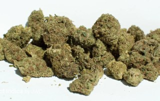 15.78% THC Select Indica by JWC
