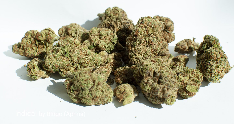 16.83% THC Indica! by B!ngo
