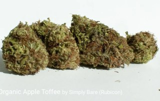 18.098% THC BC Organic Apple Toffee by Simply Bare