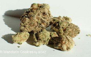25.41% THC Craft Mandarin Cookies by BOAZ