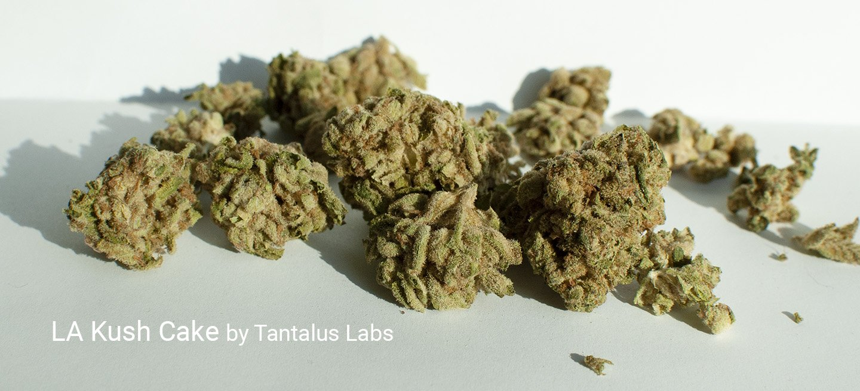 23.96% THC LA Kush Cake by Tantalus Labs