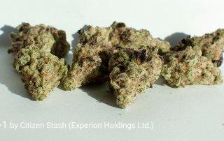 24.1% THC MAC-1 by Citizen Stash