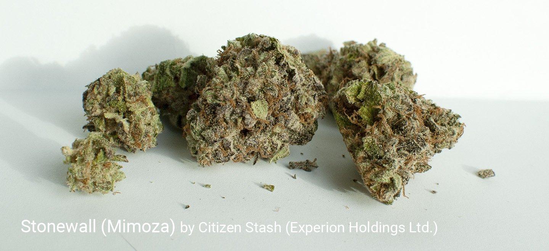 25.7% THC Stonewall (Mimoza) by Citizen Stash