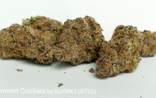 Alien Sinmint Cookies 21.9% THC 2.22% Terpenes Alien Sinmint Cookies by BLKMKT