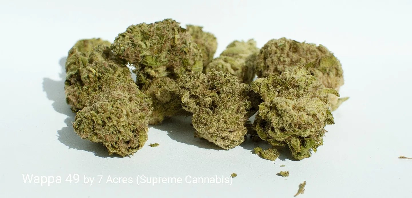 19.59% THC Wappa 49 by 7 Acres