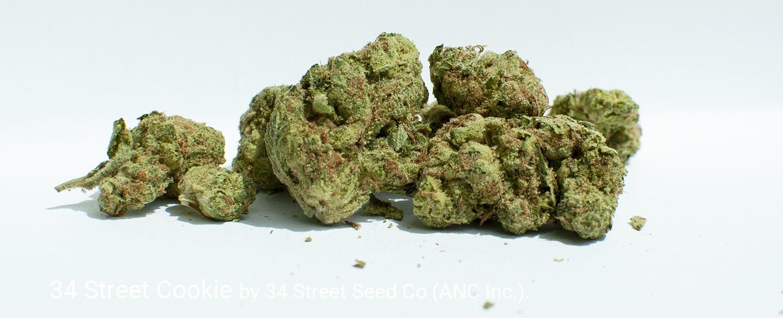 25.996% THC 4.2% Total Terpenes 34 Street Cookie by 34 Street Seed Co.