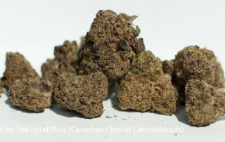 25.7% THC Exotic Gas by The Loud Plug