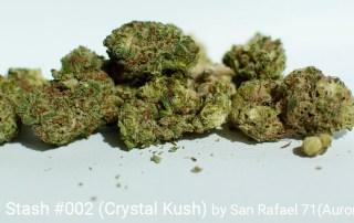 24.08% THC Grower's Stash #002 (Crystal Kush) by San Rafael '71