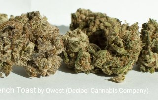 28.99% THC 1.29% Total Terpenes Stuffed French Toast by Qwest