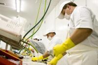 offerta di lavoro Operai settore alimentare