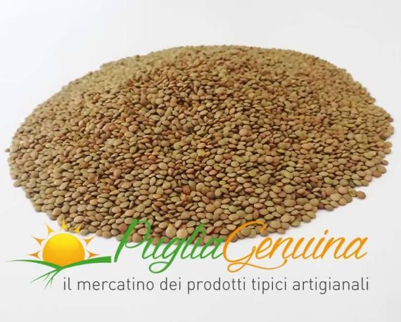 lenticchia murgia