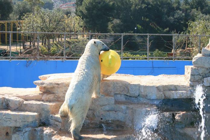 Pasqua e Pasquetta allo ZooSafari di Fasano in Puglia