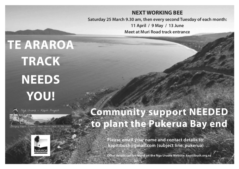 Te Araroa Track needs you! Saturday 25 March 9.30 am, meet at Muri Road track entrance. Community support NEEDED to plant the Pukerua Bay end.