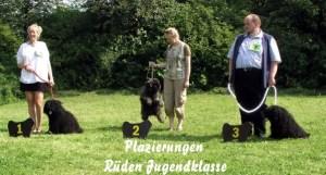 Puli Klubsieger Zuchtschau in Lautertal Rüden