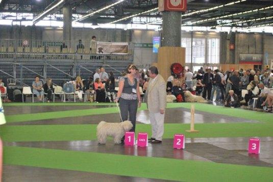 Weltausstellung in Paris 9
