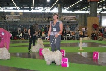 Weltausstellung in Paris 5