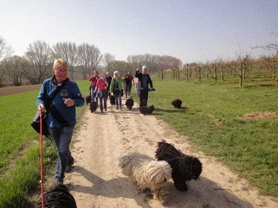 Frühlingswanderung der Landesgruppe Mitte in Gau Algesheim 14