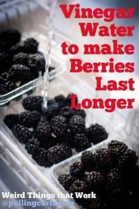 Use vinegar to rinse berries to help them last longer {wierd things that work}.