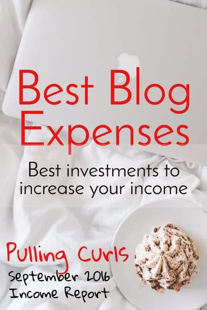The cost of a website can be really low compared to your income, as long as you are thoughtful about where you spend it. via @pullingcurls