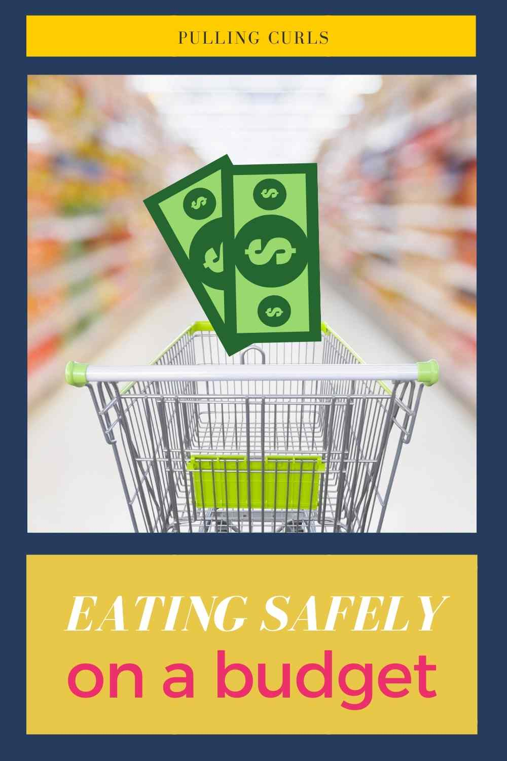 Are you worried about eating organic with your family, but also need to stay on a budget? Dr. Samantha Radford is going to talk about her best tips for eating safe on a budget. via @pullingcurls