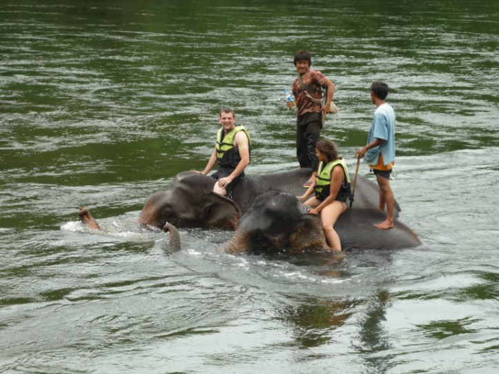 A great travel 'investment' – bathing elephants in Thailand! (source - Pulped Travel)