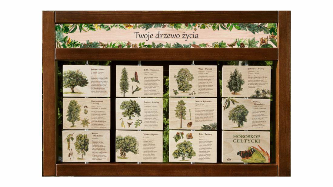 ZIDM-19 - Tablica interaktywna - Twoje drzewo zycia