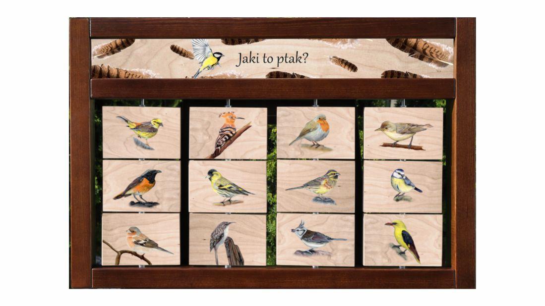 ZIDM-29 - Tablica interaktywna - Jaki to ptak