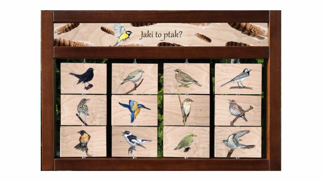 ZIDM-30 - Tablica interaktywna - Jaki to ptak