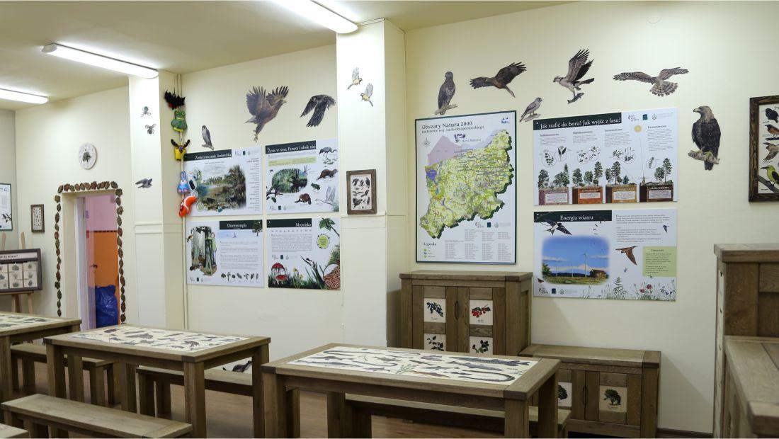 Dekoracje ścienne - Ptaki drapieżne