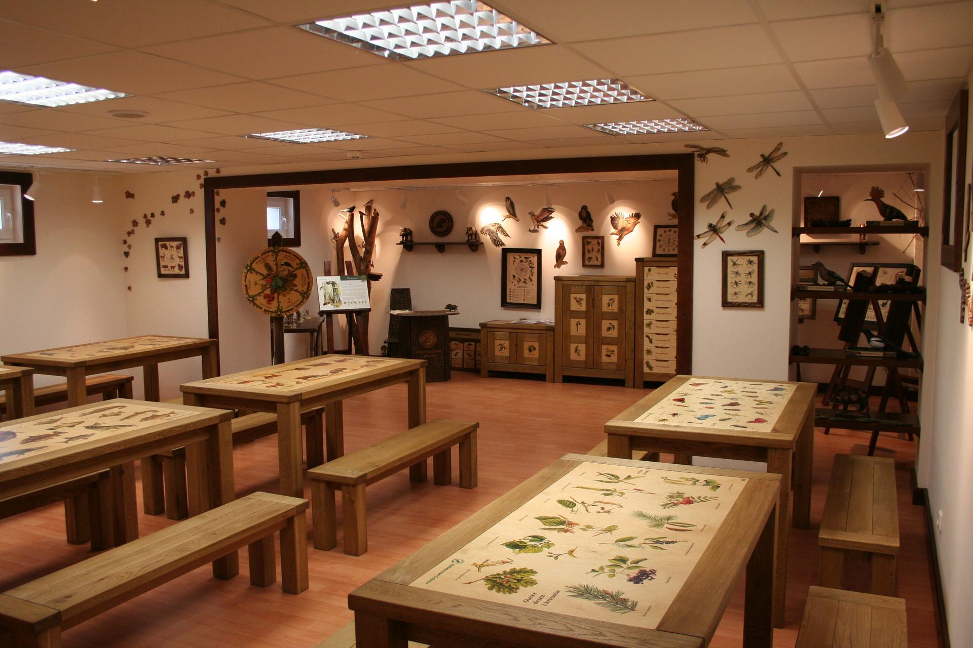 Izby edukacyjne lesne - sale przyrodnicze, wystroj wnetrz - Nadlesnictwo Cybinka (4)