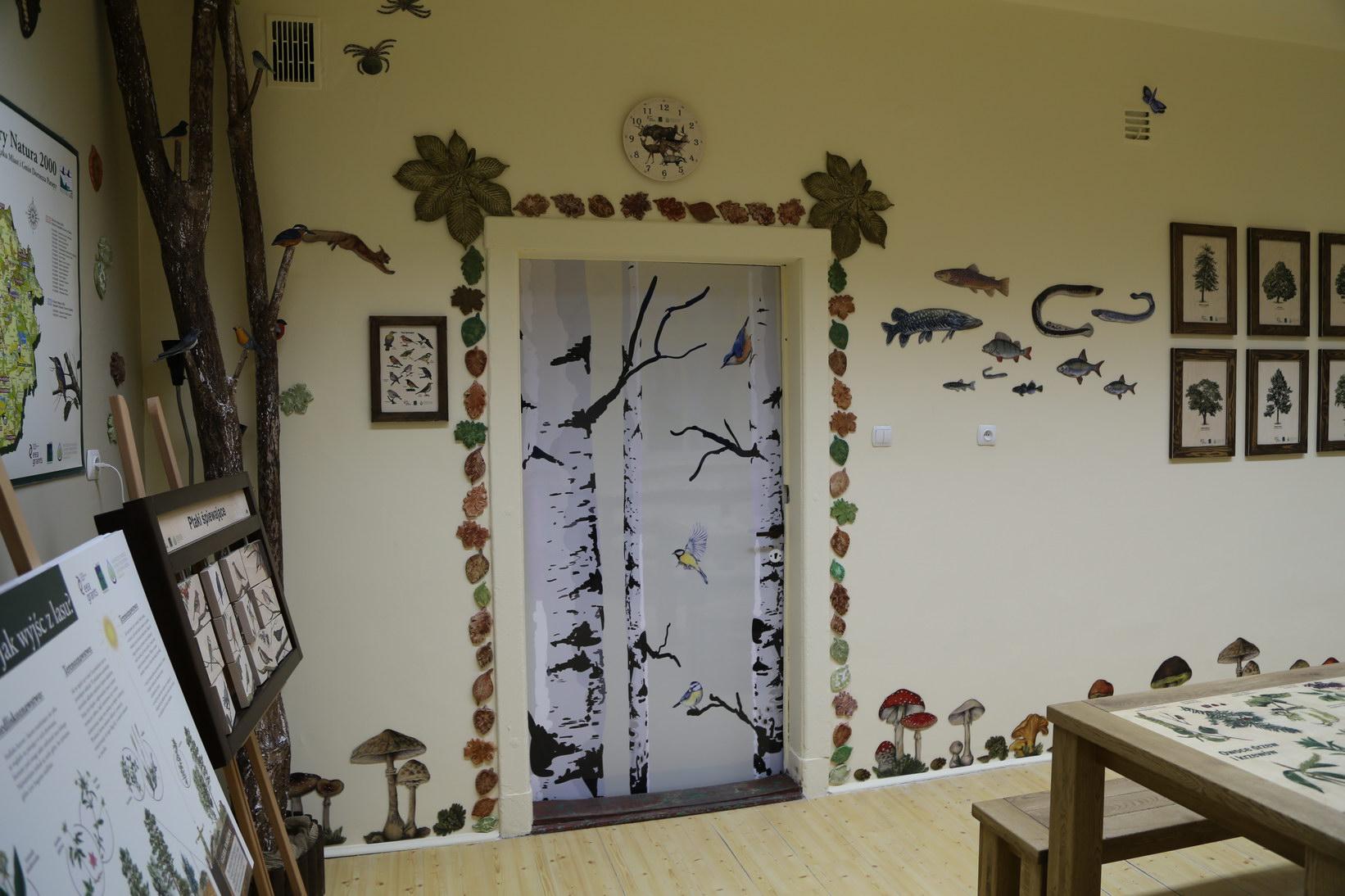 Izby edukacyjne lesne - sale przyrodnicze, wystroj wnetrz - SP w Karlinie (2)