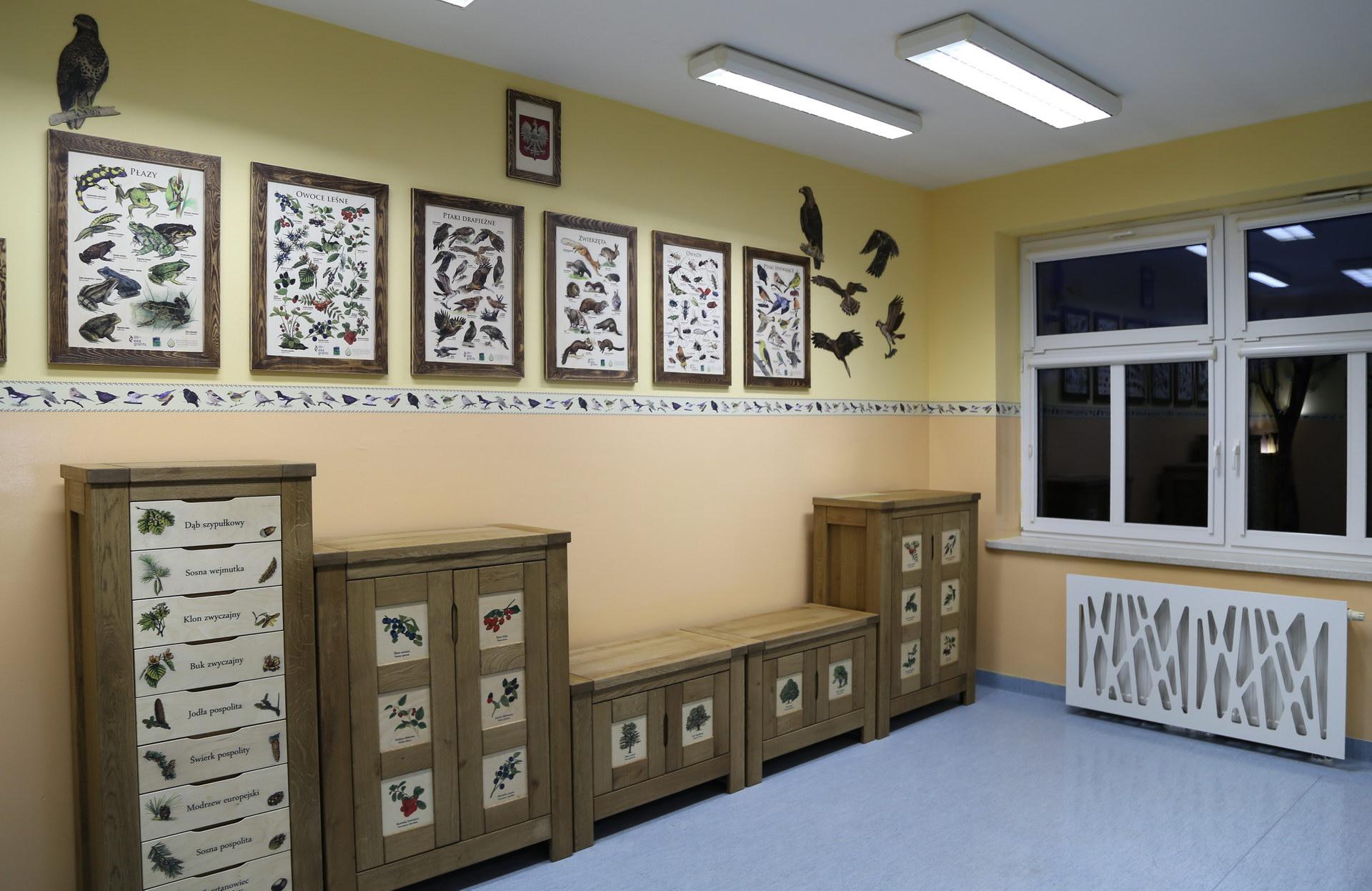 Izby edukacyjne lesne - sale przyrodnicze, wystroj wnetrz - ZS Dargin (2)