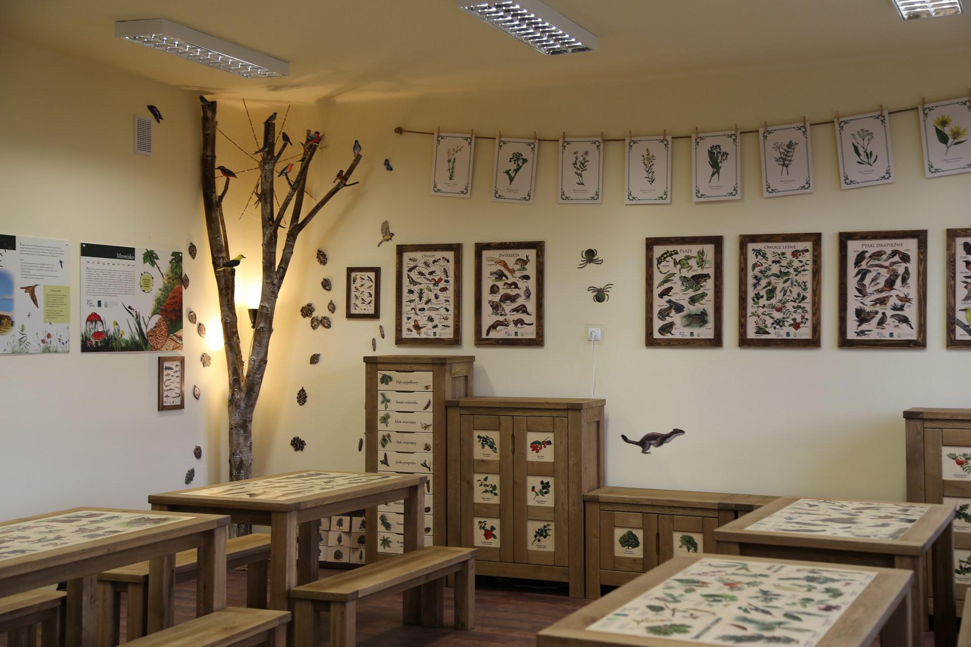 Izby edukacyjne lesne - sale przyrodnicze, wystroj wnetrz - ZS Grzmiaca (2)