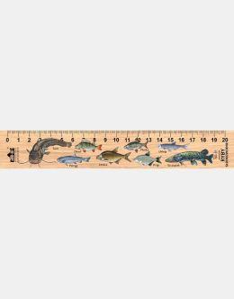 LESs-31 - Ryby slodkowodne (linijka drewniana)