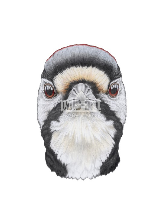 Maska - Dzięcioł