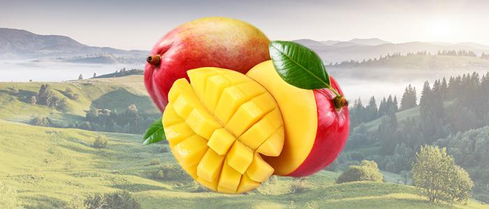 Odchudzające właściwości afrykańskiego mango