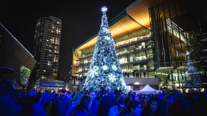 Surrey Tree Lighting Festival @ Surrey City Hall