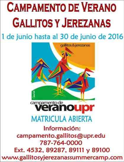 Camp Gallitos & Jerezanas