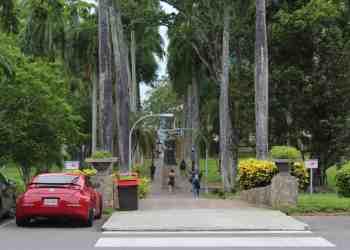Junta de Gobierno flexibiliza trámites para estudiantes de la UPR