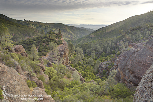 Bear Gulch, Pinnacles National Monument