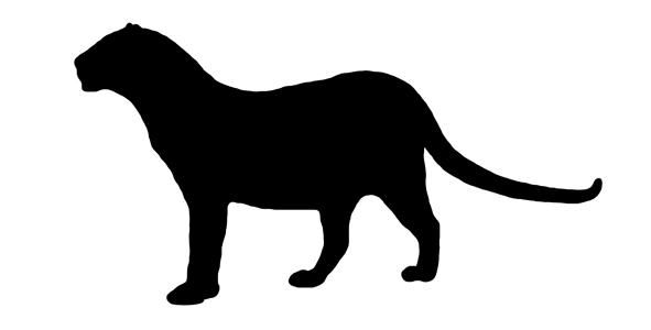Javan Leopard Silhouette