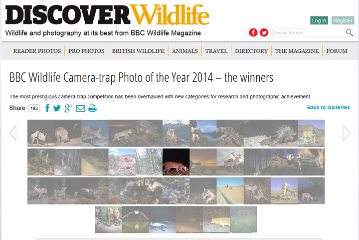 BBC Camera Trap Competition Winner's Gallery