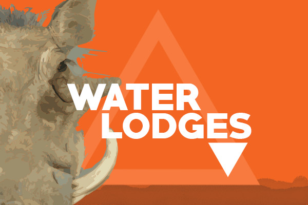 Pumba featured images water lodges