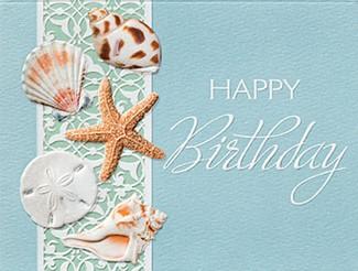 Birthday Shells Seashell Birthday Note Cards