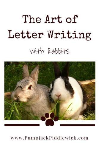 letter writing with rabbits at PumpjackPiddlewick