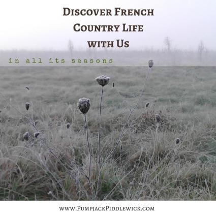 Discover French Country Life with PumpjackPiddlewick