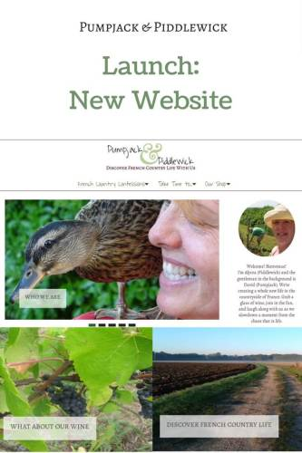 New website launch for PumpjackPiddlewick