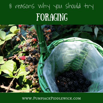 Foraging - 8 reasons why you should try it from PumpjackPiddlewick