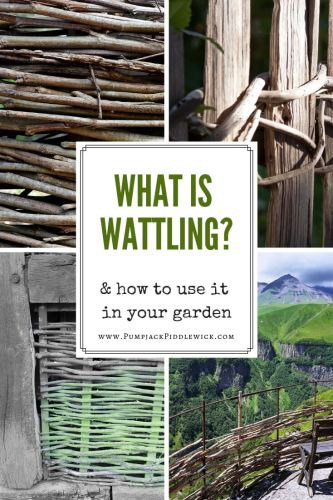 Wattling, my gardening friends, is an old fashioned way of making fencing out of branches. Not only does it look lovely but if your garden has trees, it will not require store bought fencing materials. In other words, it's free.