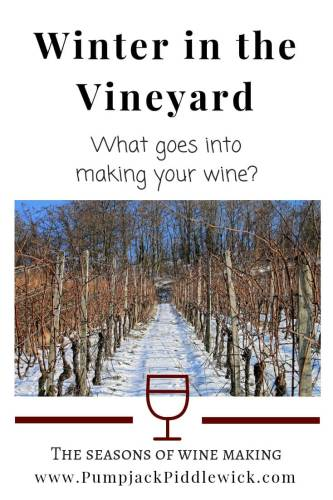 winter in the vineyard - what goes into making your wine @ Pumpjack & Piddlewick